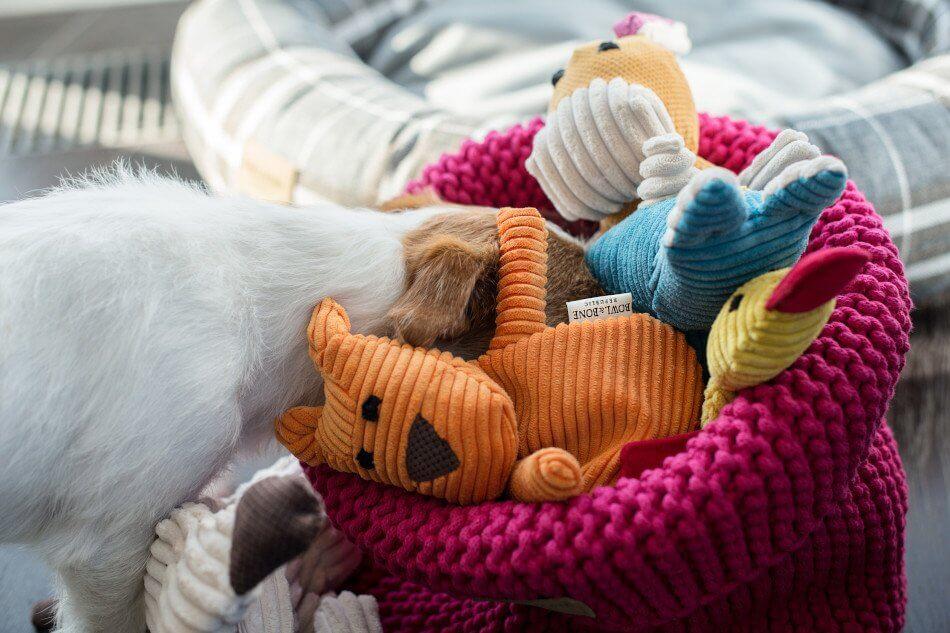zabawka dla psa felix duckie roy bax kosz na zabawki cotton pink rozowy bowl and bone republic ls1sa