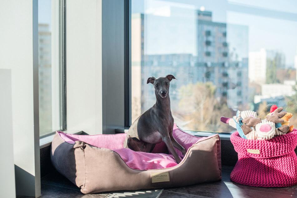 legowisko dla psa classic pink rozowy kosz na zabawki bowl and bone republic blog